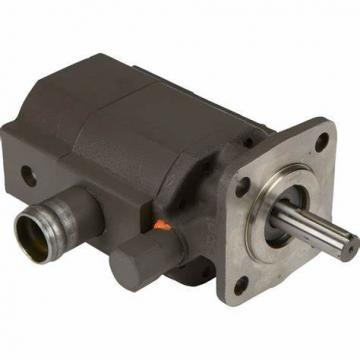 Blince Vane Pump Replace Yuken Series PV2r12, PV2r23, PV2r13 Double Vane Pump